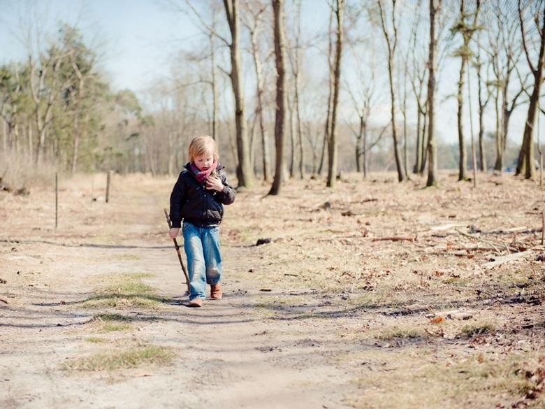 Op zoek naar dennenappels - Spelen in het bos
