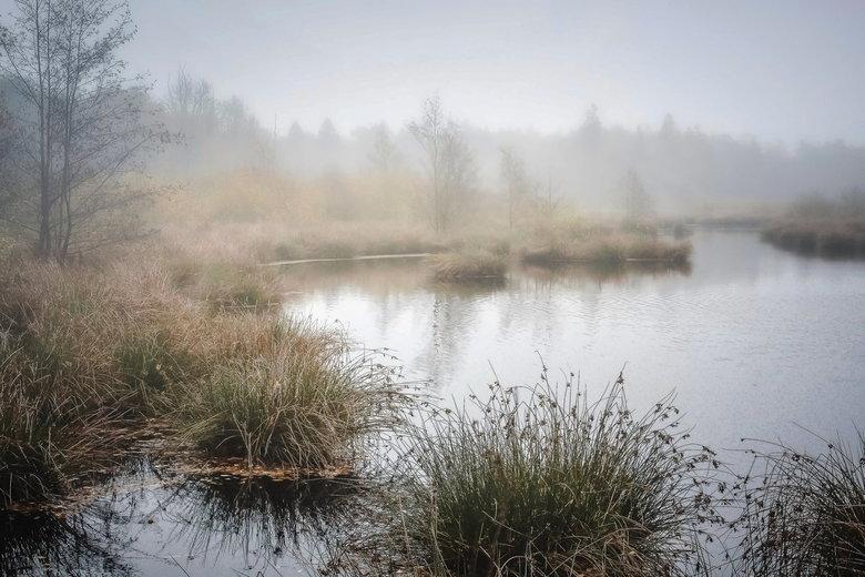 Veenmeer  - Deze foto gemaakt in het mooie witteveen in Buurse, pal aan de grens met Duitsland.