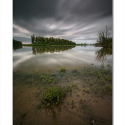 De Biesbosch Delta
