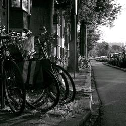 bikes in den haag