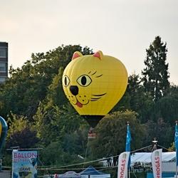 De demo ballon.