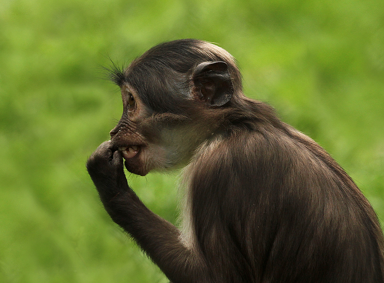 Stop biting your fingernails! - The thing is, you don't even know you're doing it....