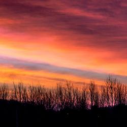 Pink sky...
