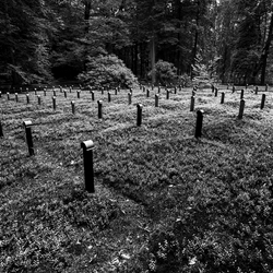 Oude begraafplaats Rozendaal 2