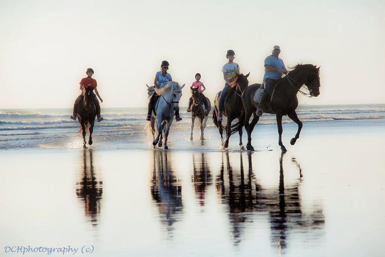Paardrijden op het strand - Het vervolg op de voorgaande opname. <br /> <br /> Iedereen bedankt voor de fijne reacties. Wens iedereen een fijn weeke