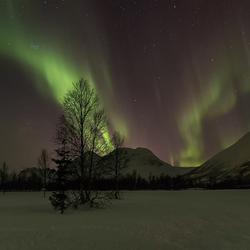 Aurora Borealis in Breivikeidet,Noorwegen