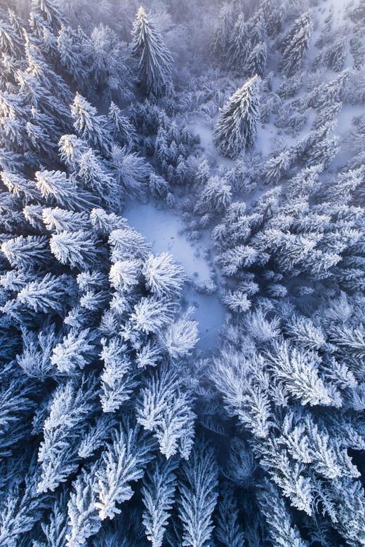 Snow World - Tijdens een korte vakantie in zuid Duitsland (Garmisch Partenkirchen)afgelopen weekend, werden we plotseling verrast door een flinke snee