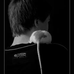 Met de rat ...