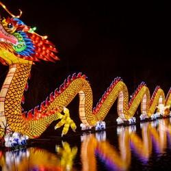 Chinees licht festival Utrecht