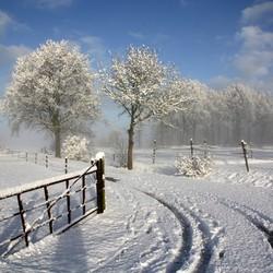 Winter op het platteland