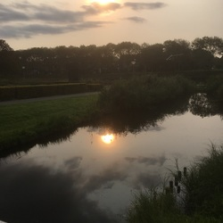 Park weerspiegeld in de ochtendzon