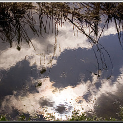 Reflection III: The Clouds