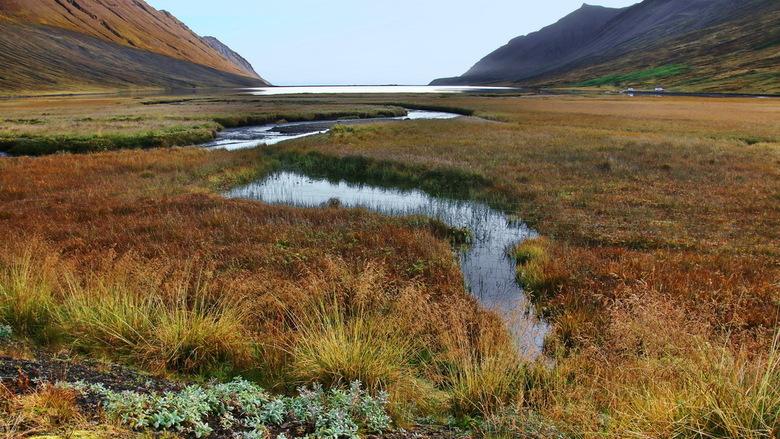 IJsland -11- -
