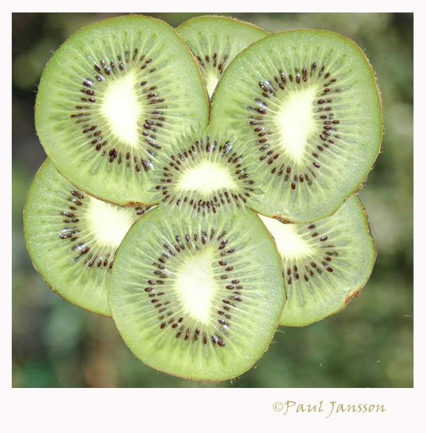 Le Kiwi Fleur Bewerkte Fotografie Foto Van Pauljansson Zoom Nl