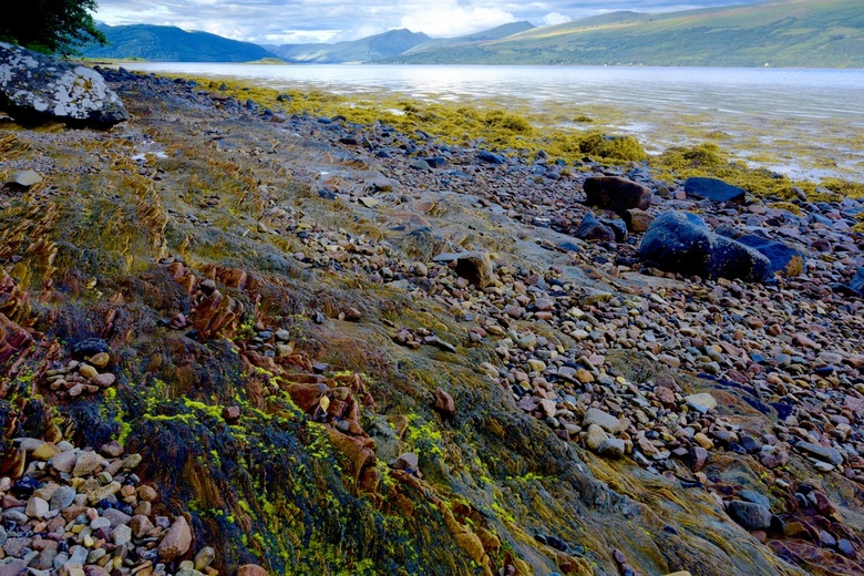 Shore of Loch Fyne - Kleurvolle kustlijn aan het meer Loch Fyne