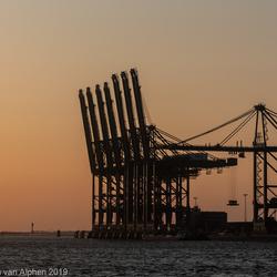 Antwerpse havens