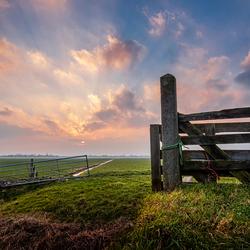 Meadow Gates
