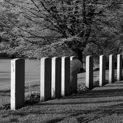militair kerkhof in de winter