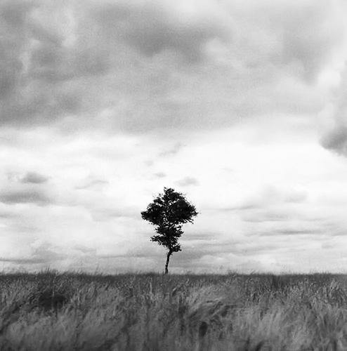 Minimalistisch landschap #3 - En hierbij de 3e foto uit m'n reeks.