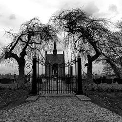 kerkhof zw/w