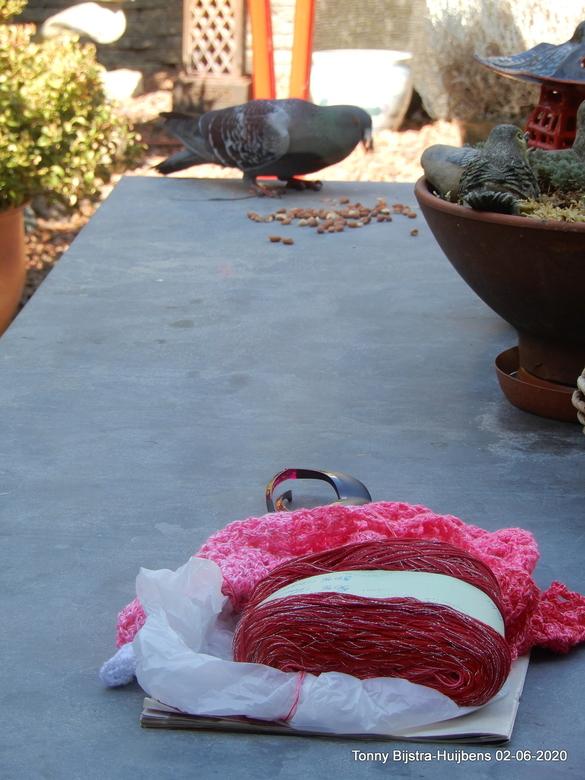 w.i.pje - ik heb een aantal hobby's, haken is er eentje van. op tafel ligt dus een bol haakgaren waar een sjaal van gemaakt gaat worden. een &quo