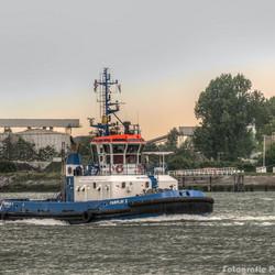 Fairplay I in aktie op de Nieuwe Waterweg