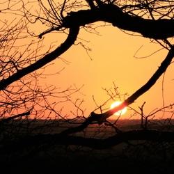 Zon gaat onder op het Dwingelderveld