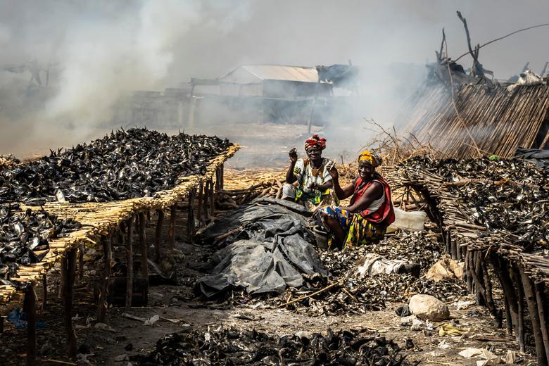 Women at work - Women working at a fish smokehouse in Senegal.