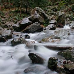 Beekje waterval Tendon