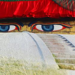 Boedha's ogen