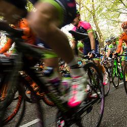 Amstel Gold Race 2014 003.jpg