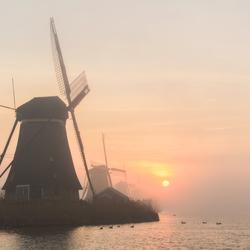 The battle between fog and sun