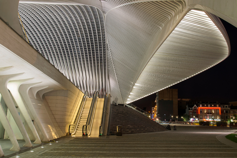 overzicht station Guillemins - Het prachtige stationsgebouw Guillemins te Luik ontworpen door Calatrava.
