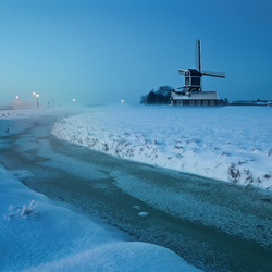 Hollandse Winter