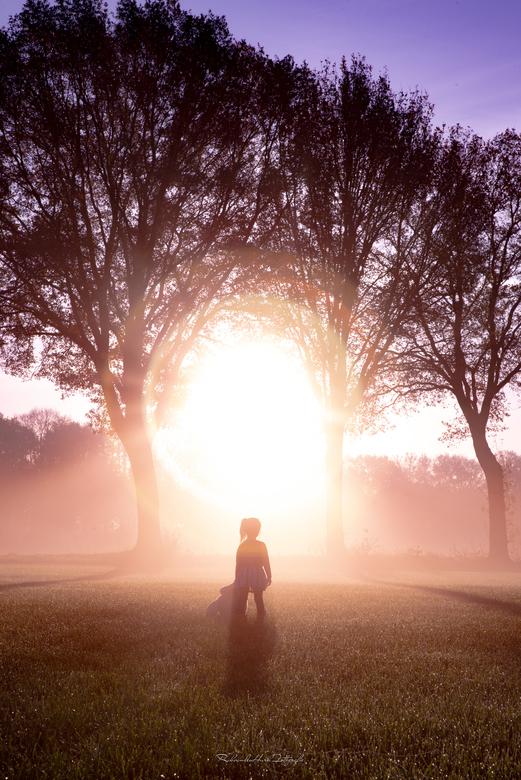 The light is my path - Eindelijk idee kunnen uitvoeren. Eindelijk mist en zon. Ik wilde een tot de verbeelding sprekende foto maken. Beetje dromerig ,