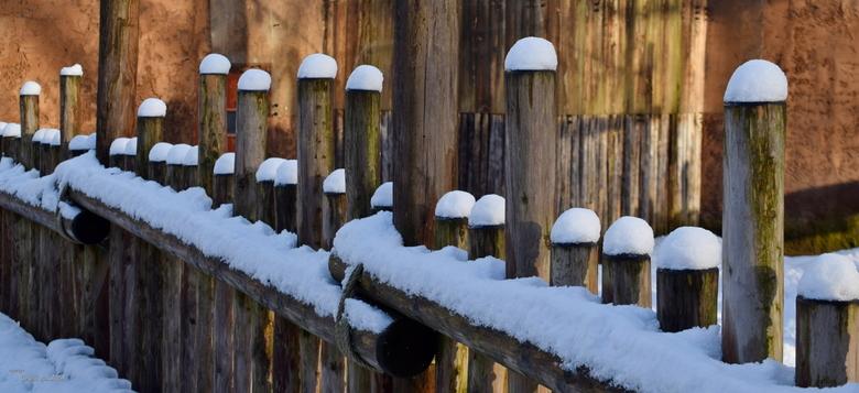 sneeuwkopjes