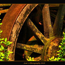 wiel van hout