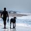 De man en zijn hond