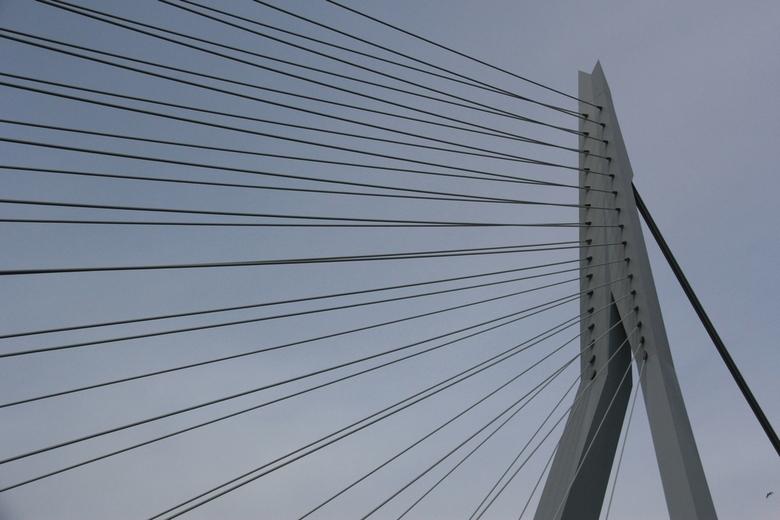 Erasmus #1 - Afgelopen weekend een rondvaart gemaakt o.a. door Rotterdam.
