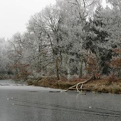 winterlandschap 21-12-2007