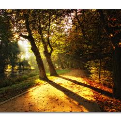 Magic of Autumn3!!
