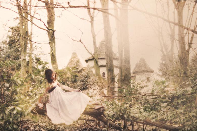 Princess castle - Er was eens een prinses...<br /> Ze woonde in een prachtig oud kasteeltje samen met haar boze stiefmoeder. <br /> Overdag zwierf h