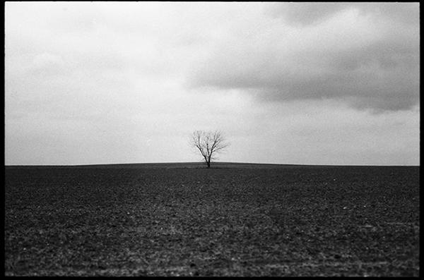 Minimalistisch landschap #4