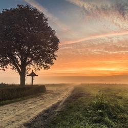 Mistige ochtend Het Groot Veld