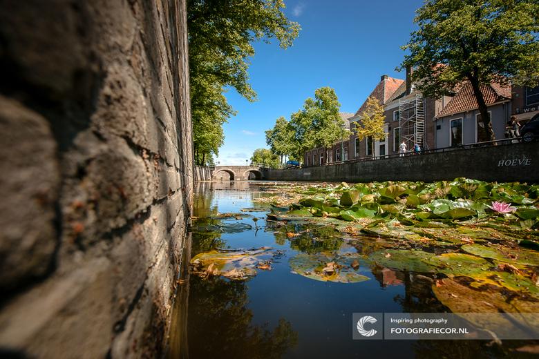 Zomerse dag in een slaperig stadje - Een kabelende zomerse dag in de eeuwenoude hanzestad Kampen. Wie even stil staat voelt hier de tijd langzaam voor