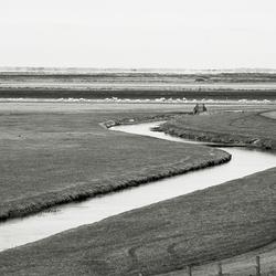 Buitendijks land