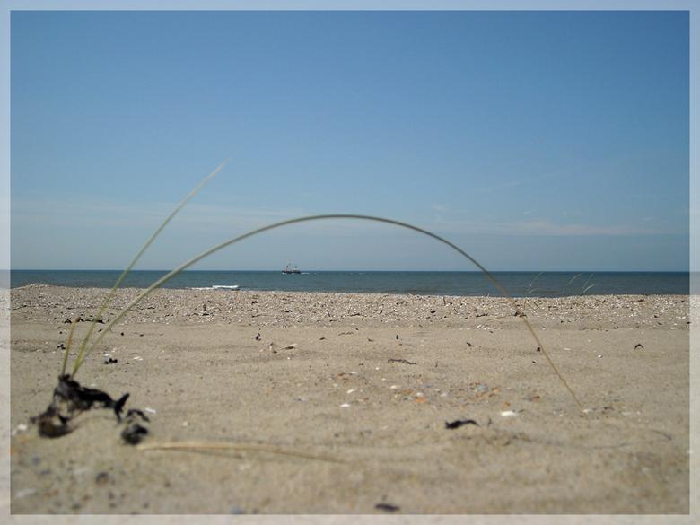 Toeval - foto van een tijdje terug. Ik zag op het strand hier wat helmgras uit de duinen. Deze stond in een boogje en dacht: daar kan ik fotografisch