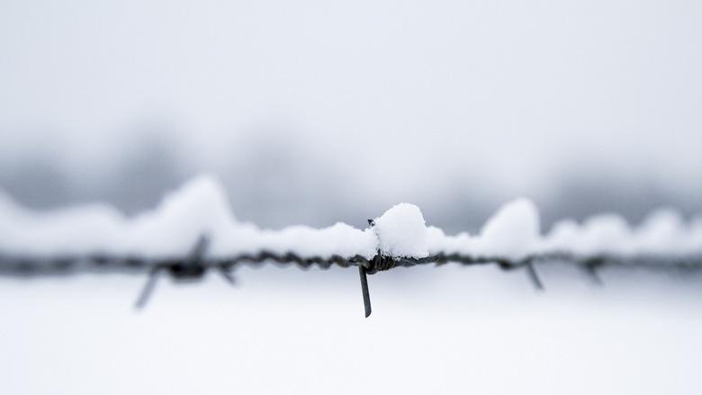Prikkelend sneeuw -