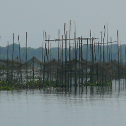 Cambodia Tonle Sap river