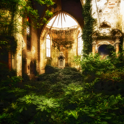 Overgrown church